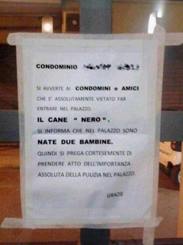 cane_nero