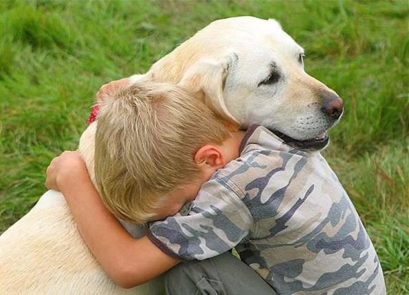 cane-autismo